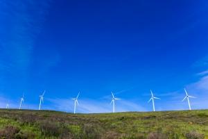 windmills53